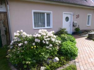 Haus in Frontansicht, geplasterter Eingangsweg